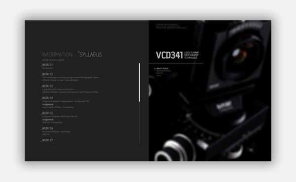 VCD341 LARGE FORMAT PHOTOGRAPHY